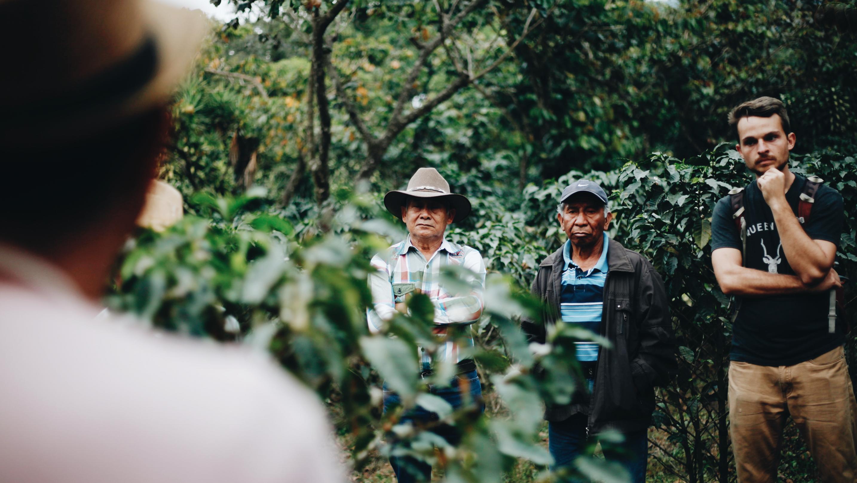 coffee farmers and ryan