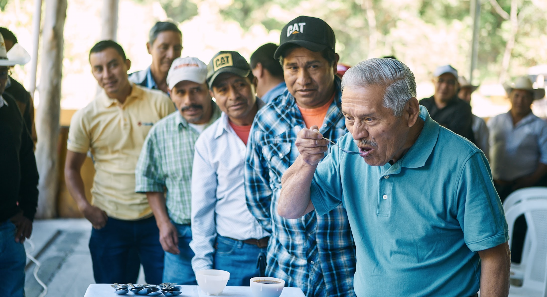 Coffee farmers cupping their coffees